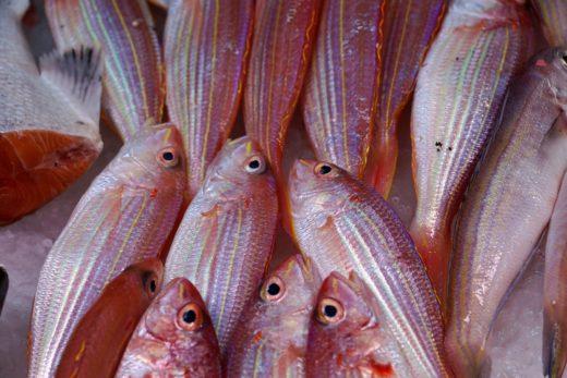 zuppa di pesce con la cipolla ricetta